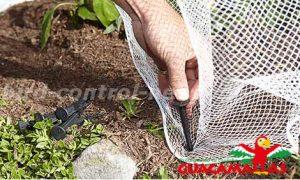 bird net installation in garden